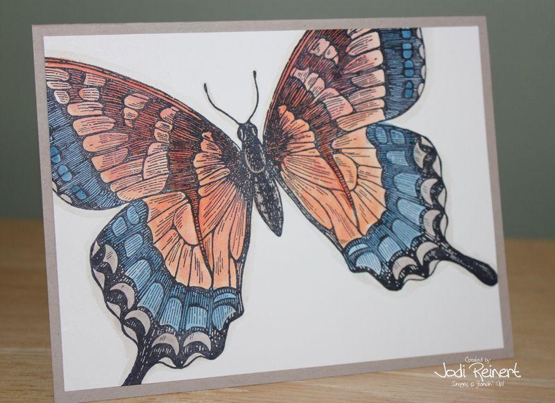 Swallowtail wc