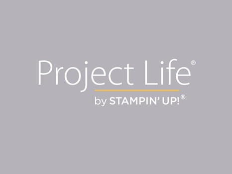 Project life logo
